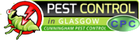 Pest Control in Glasgow